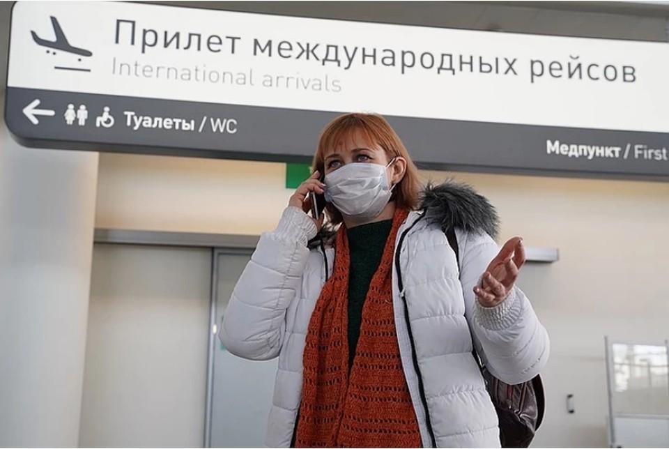 В первые сутки после объявления о возобновлении авиасообщения с тремя странами поиски билетов выросли в 2-6,5 раз.