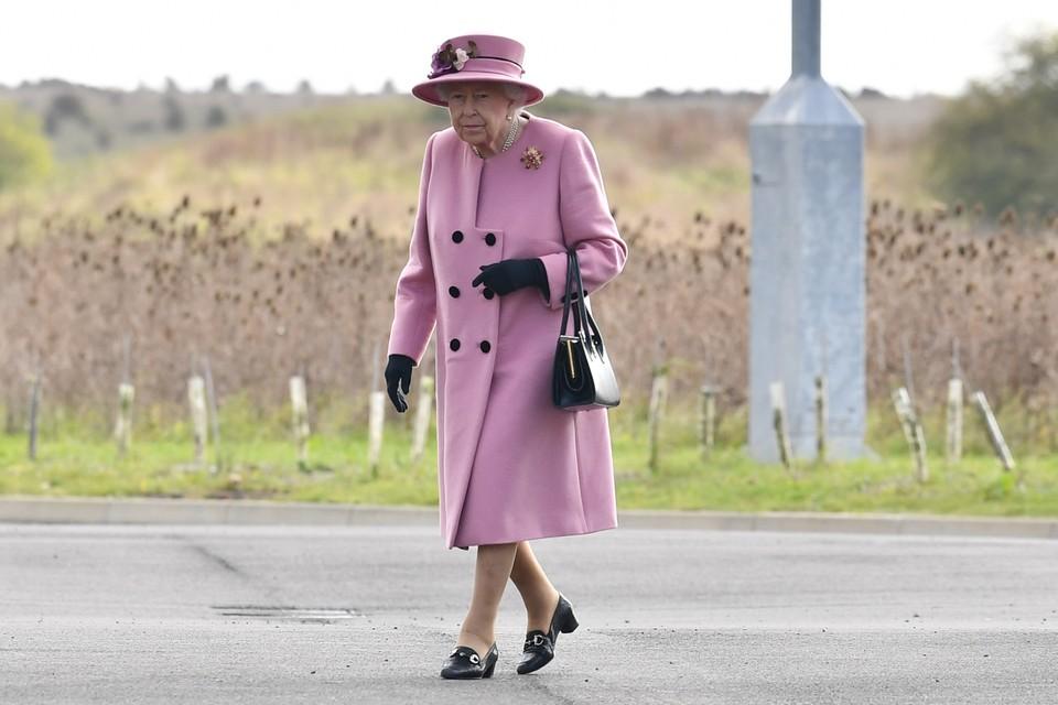 Елизавету II раскритиковали подданные за нарушение карантина