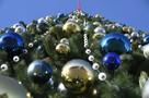 В Туле приступят к установке главной городской елки в ноябре