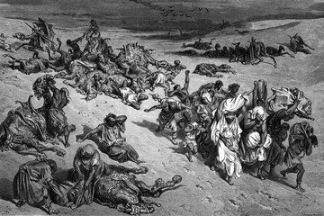 """Причиной 10 египетских казней стали """"красные приливы"""" - виновники экологического ЧП на Камчатке?"""