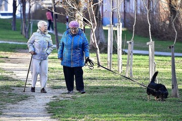 В России предложили ввести новую систему начисления пенсий «по рангам»