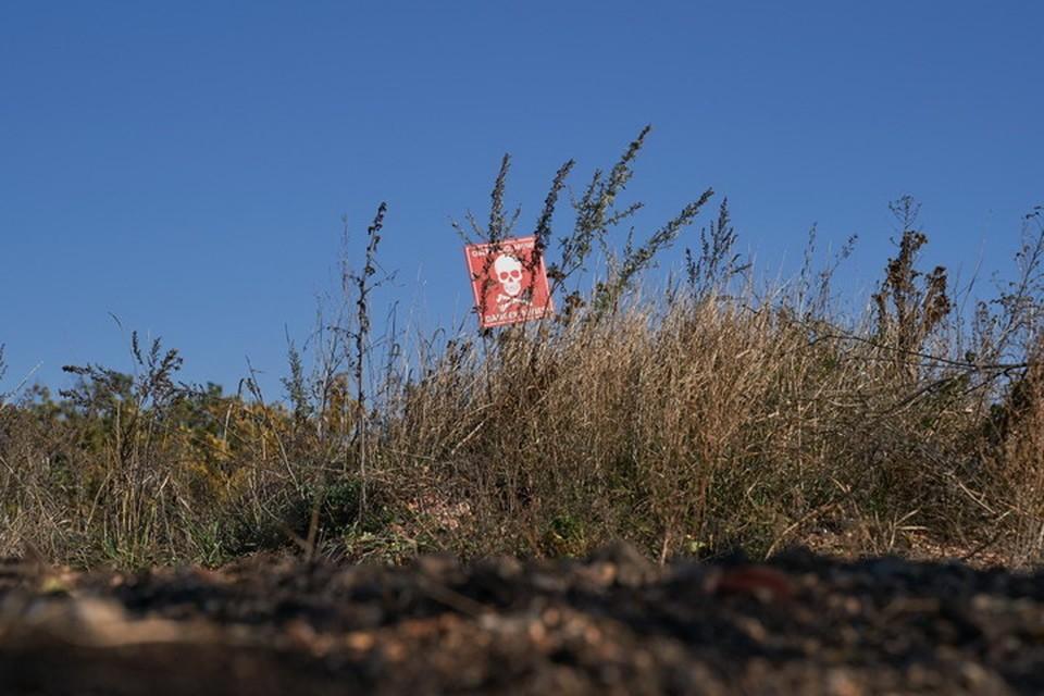 Участок, где случилась трагедия, был обозначен знаками о минной опасности. Фото: Пресс-центр штаба ООС