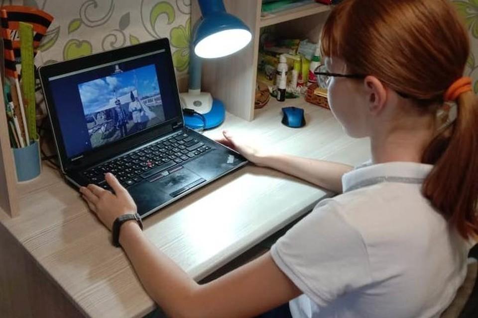 В ЛНР решили устранить недочеты дистанционного обучения. Фото: МОН ЛНР