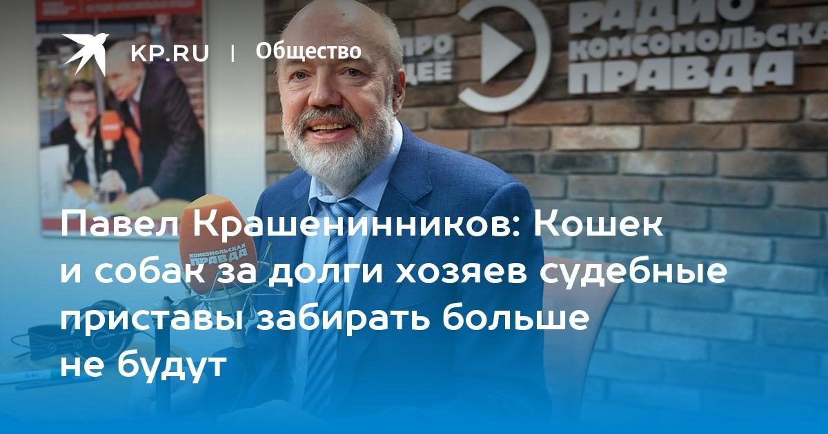 Павел Крашенинников: Кошек и собак за долги хозяев ...