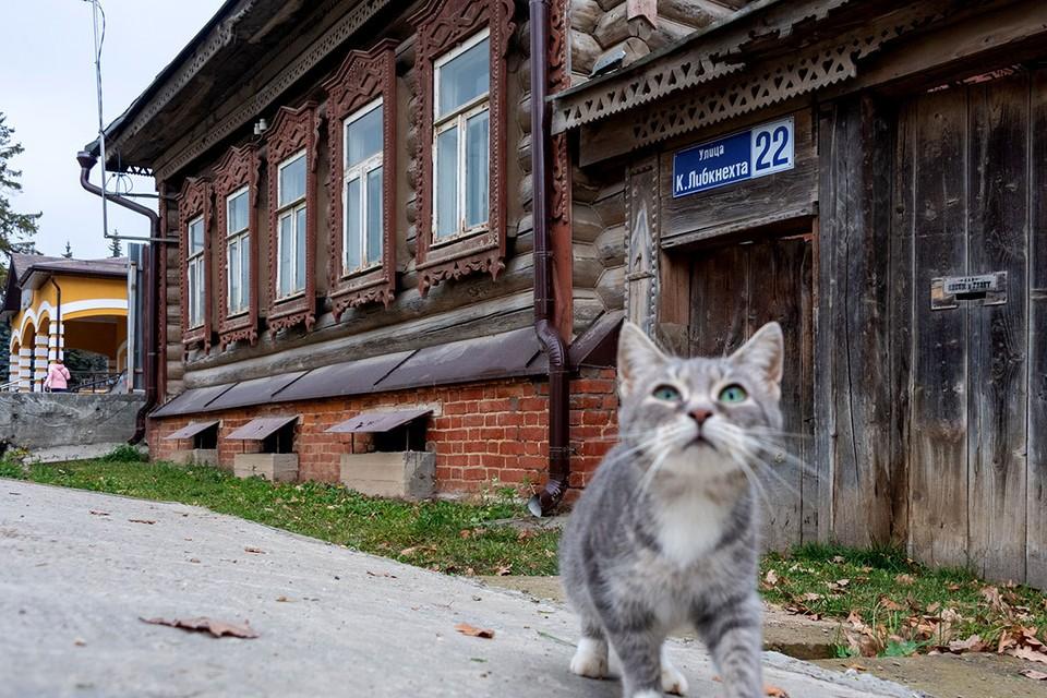 В Тарусе решили вернуть названия старинным улицам. Но жители недовольны.