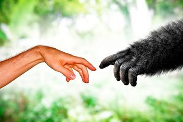 Ученый Ричард Докинз: Все люди на Земле – родственники