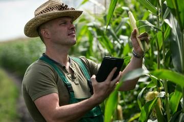 Зарплата агронома в России в 2020 году