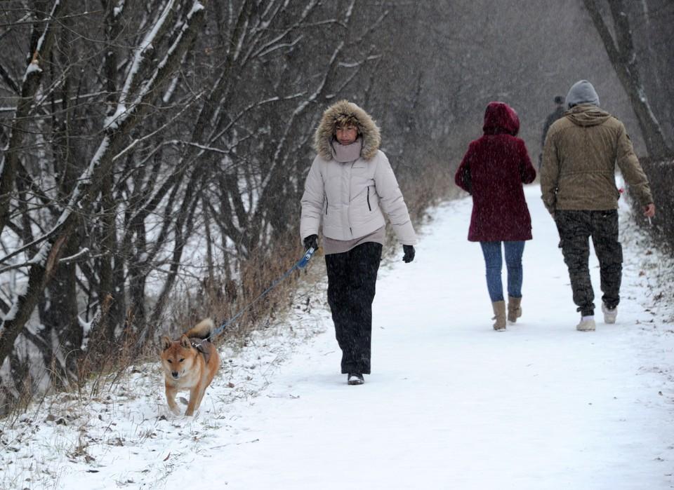В Москву нагрянут снегопады.