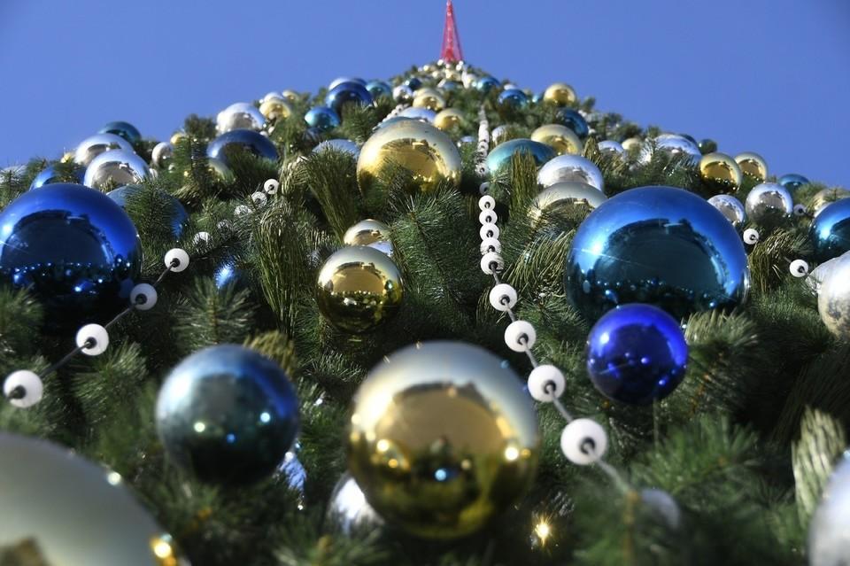 В Туле началась установка главной новогодней елки