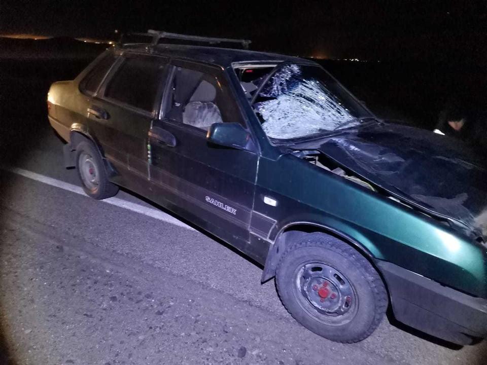 Водитель говорит, что мужчина выскочил на дорогу неожиданно Фото: пресс-служба УГИБДД по Челябинской области