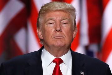 В лучших интересах страны: Трамп распорядился начать процедуру передачи власти