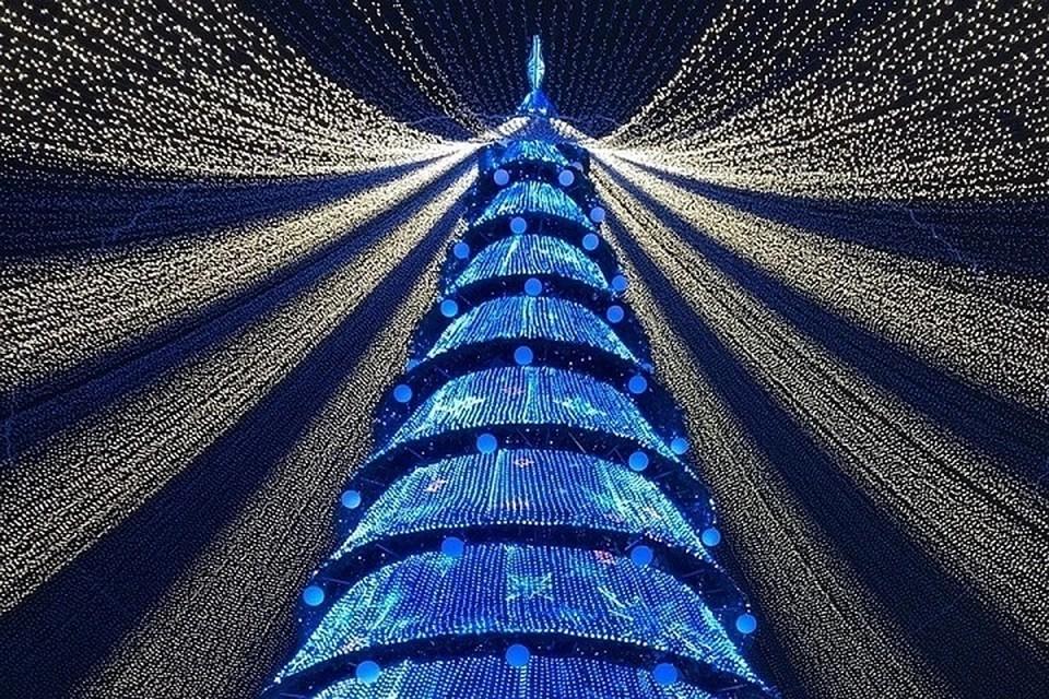 В управлении считают, что лучше обойтись без корпоративов и встретить Новый год 2021 на открытом воздухе.
