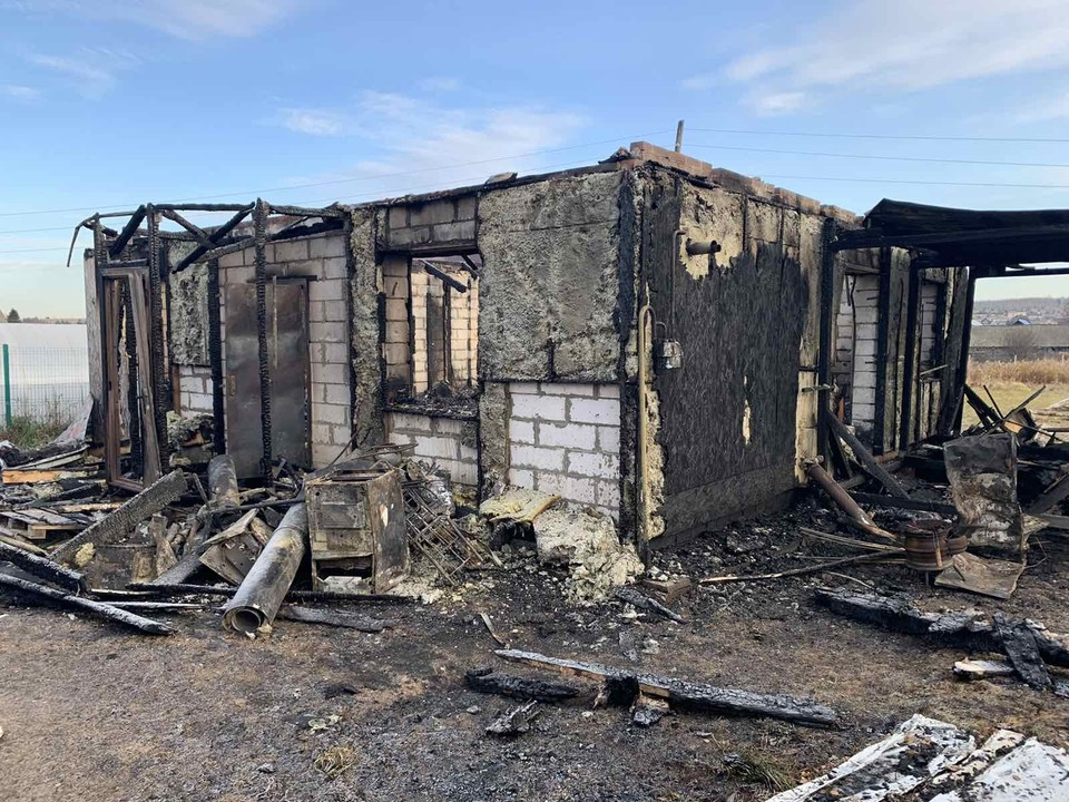 Четыре собаки, четыре щенка и две кошки сгорели в пожаре в Удмуртии