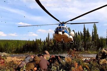 Самое большое вливание за последние десятилетия: эксперты оценили траты на лесопожарную технику