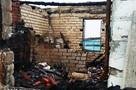 «Сначала война, теперь пожар. Если б не Маркиза…»: под Волгоградом кошка спасла семью беженцев из Луганска