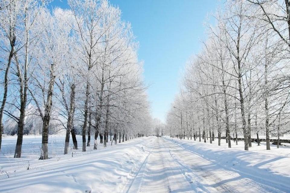 Лишь на западе сохранится малооблачная и морозная погода.