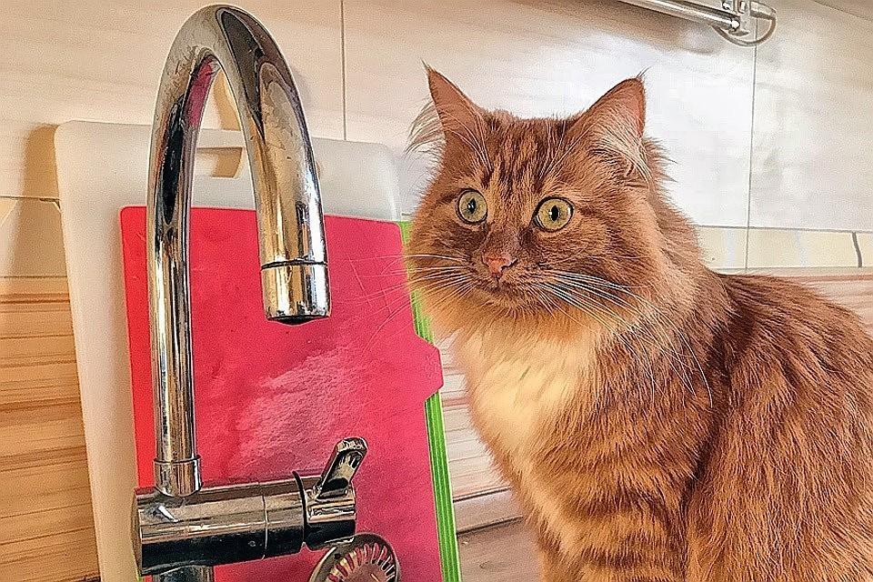Водоснабжение в домах не нарушено