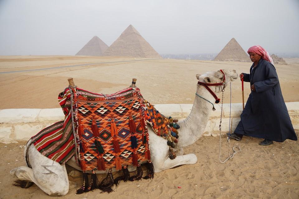 Все российские рейсы будут прилетать в Каир