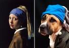 Держи хвост кисточкой: Благодаря фотошедеврам собака Ханна и ее хозяйка стали известны во всем мире