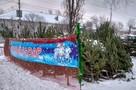Елочные базары 2020 года в Саратове: где купить елку на Новый год