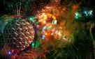 Коллектив Департамента Росгидромета по ДФО поздравляет жителей региона с наступающим Новым годом!