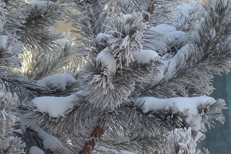 В январе Кузбасс накроет второй волной арктического холода