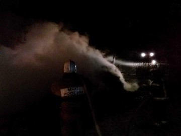 В Орловской области из пожара спасли трех быков и корову