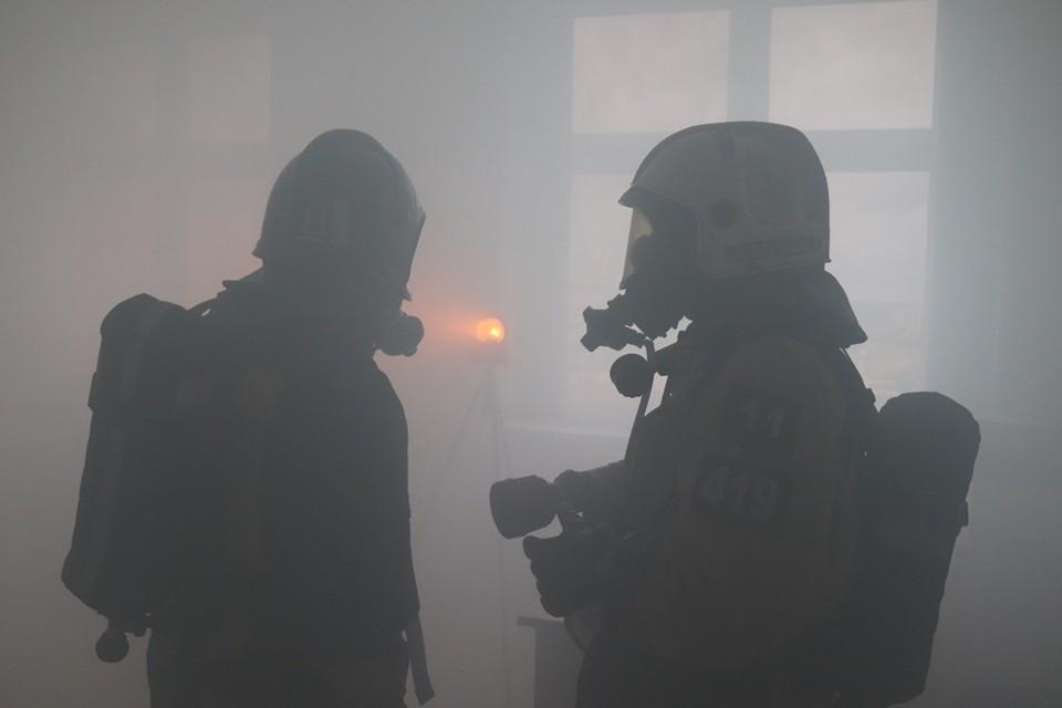 Известна предварительная причина пожаров.