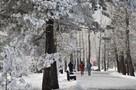 Синоптики предупреждают, что на выходных Иркутск засыплет снегом