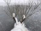 «До минус 25»: На Кубань пришли аномальные морозы