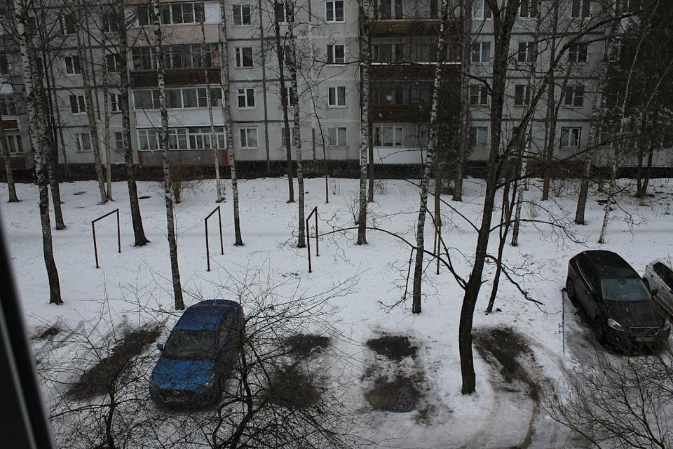 В конце недели в Тверской области местами пройдут осадки, и будет легкий мороз.