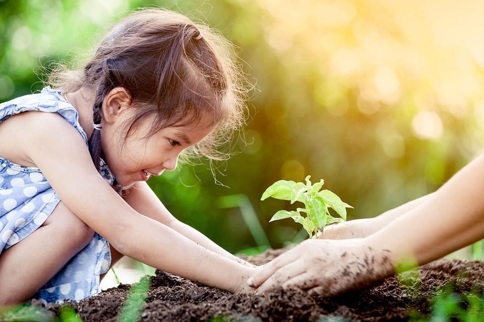 Чистая страна начинается со школы. Чтобы завтра мы жили в зеленых и красивых городах и дышали свежим воздухом, учить детей заботиться о природе и жить экологично, нужно сейчас.