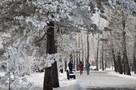 Почти 300 камер видеонаблюдения установлено в центре Иркутска