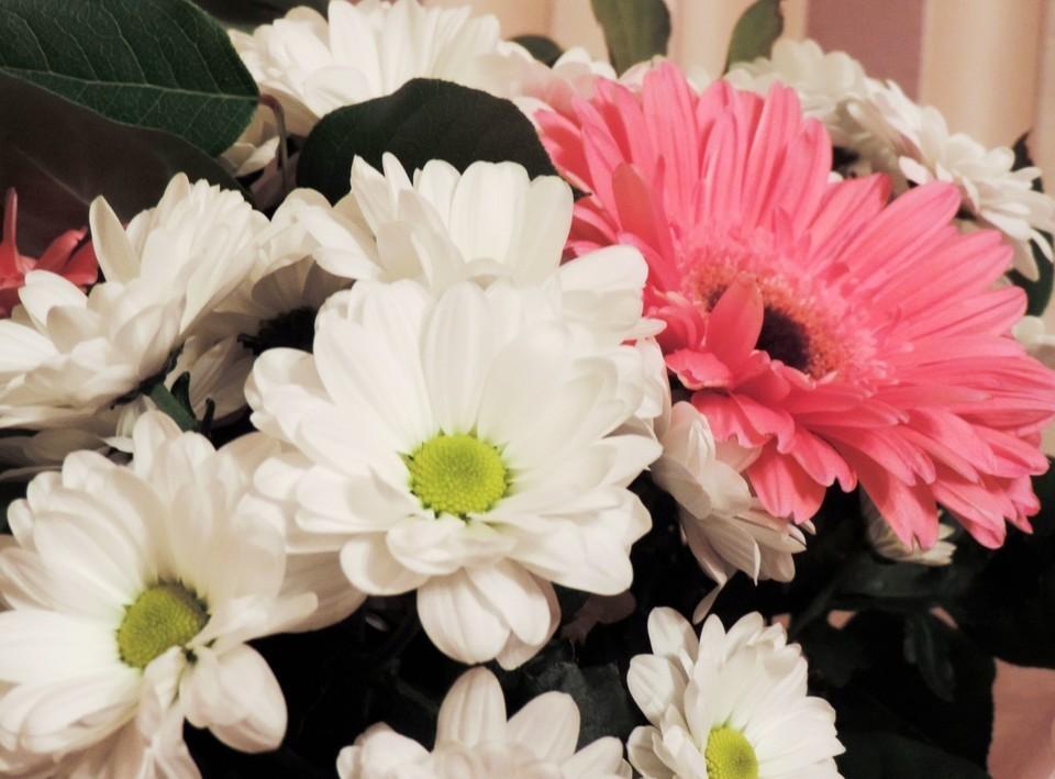 Суровая статистика: не всех влюбленных ждут подарки и сюрпризы 14 февраля. Фото: Екатерина ПАПАКИНА