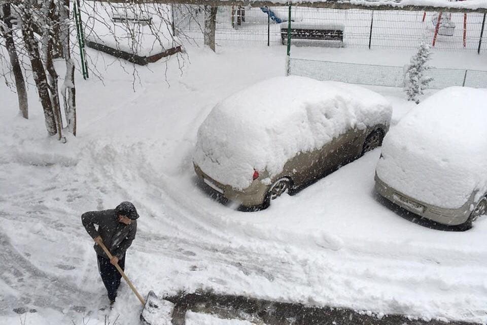 Симферопольцы забыли, как это - автомобиль в снегу. Фото: facebook/Рустам Корсовецкий