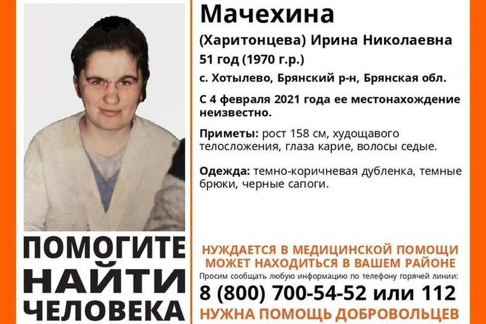 Фото: «Поисковый отряд «ЛизаАлерт» Брянской области» в vk.com.