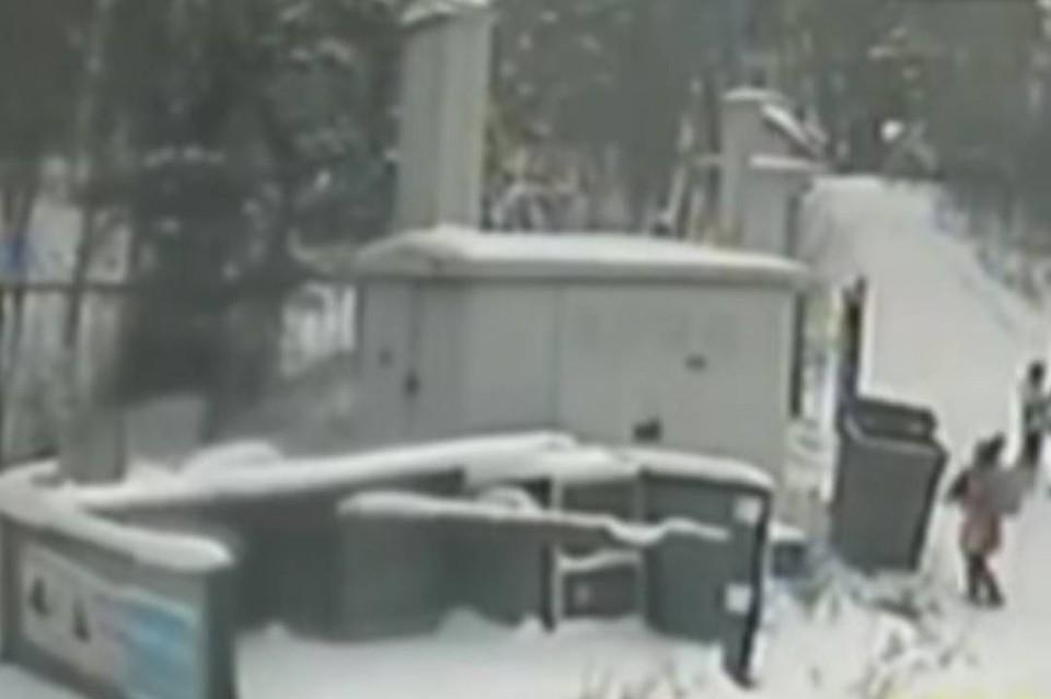 Школьница взяла щенка за шкирку и швырнула в мусорку. Фото: скрин с видео с камеры видеонаблюдения. Инцидент Иркутск.