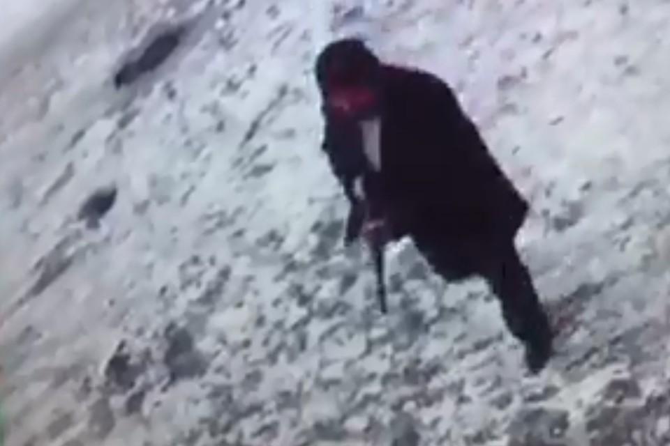 В Новокузнецке мужчина открыл стрельбы на оживленном проспекте. Фото: ГУ МВД России по Кемеровской области