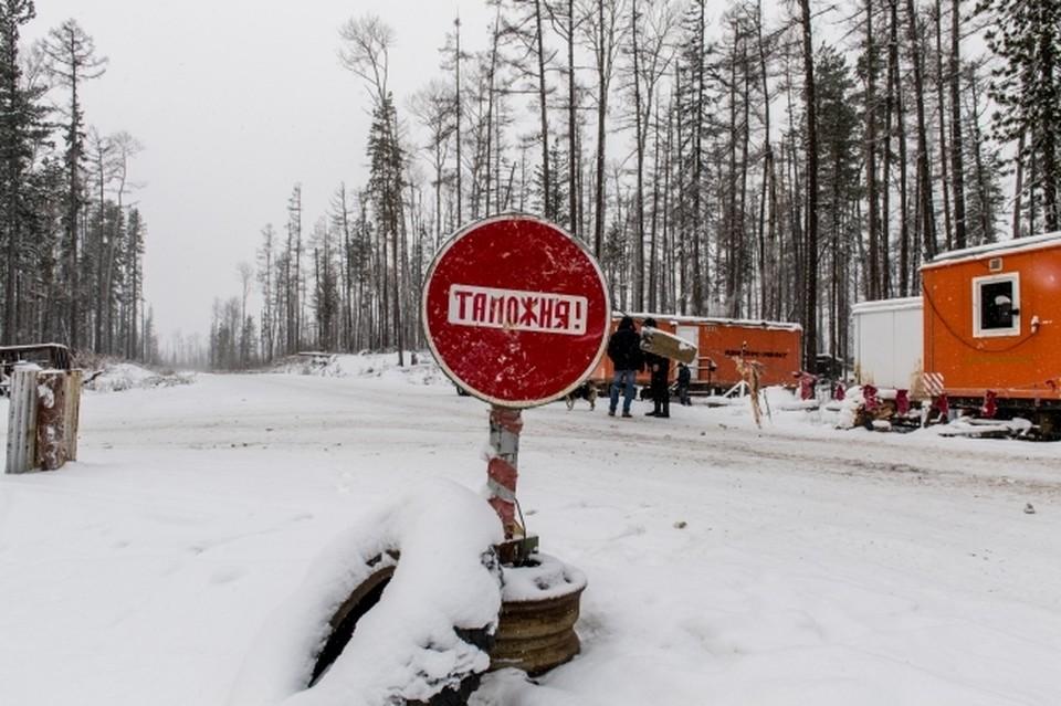 Таможня опровергла проблемы с оформлением цветов при ввозе в Россию