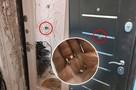 9-летнюю девочку, которую сосед застрелил сквозь дверь, похоронили в Чите