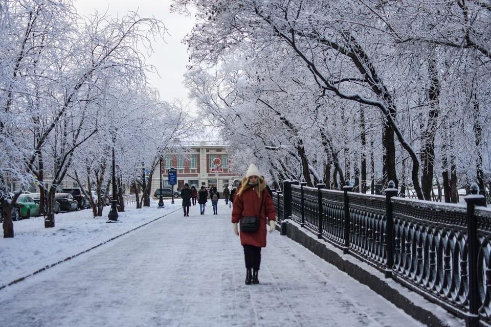 В Новосибирске потеплеет, но усилится ветер.