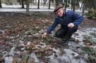 Когда в ДНР придет настоящая весна
