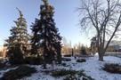 Оттепель в Саратове: рассказываем, как будет меняться погода в последние дни зимы 2021 года