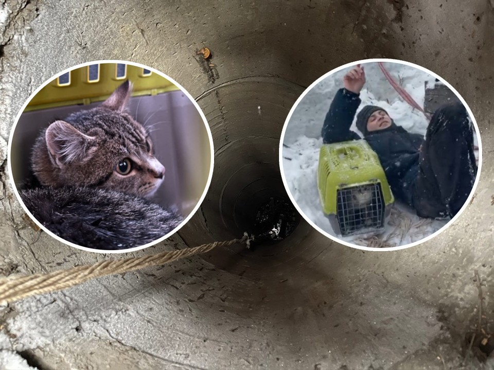 «Кирпичи могли посыпаться в любой момент»: парень, рискуя жизнью, спас котенка, который провалился в 10-метровый колодец