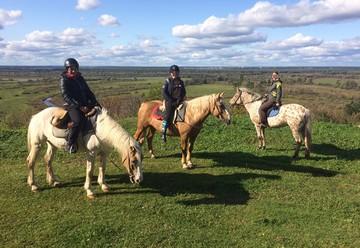 «Мама привила дочке любовь к лошадям»: Знакомые рассказали о семье, убитой в Нижнем Новгороде садовником-гастарбайтером
