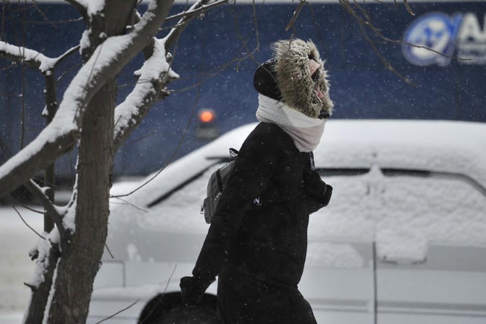 Спасатели предупредили ярославцев о сильном снегопаде