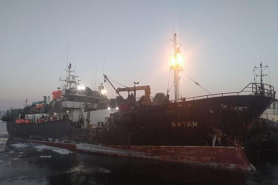 Судно, построенное в 1990 году, терпит бедствие в заливе Петра Великого. Фото: marinetraffic.com