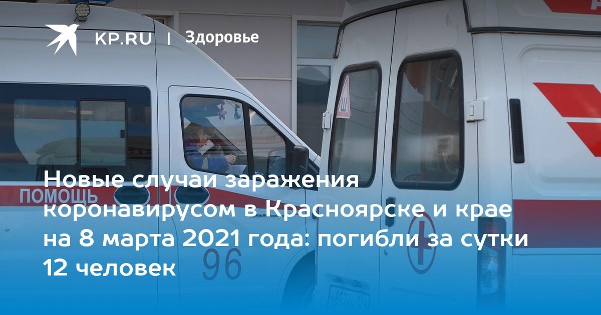 грибы в красноярском крае 2021