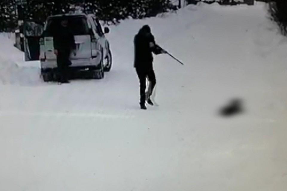 Живодер из Усть-Илимска, который застрелил собаку и проволок ее прицепленной к машине, может получить до 5 лет колонии