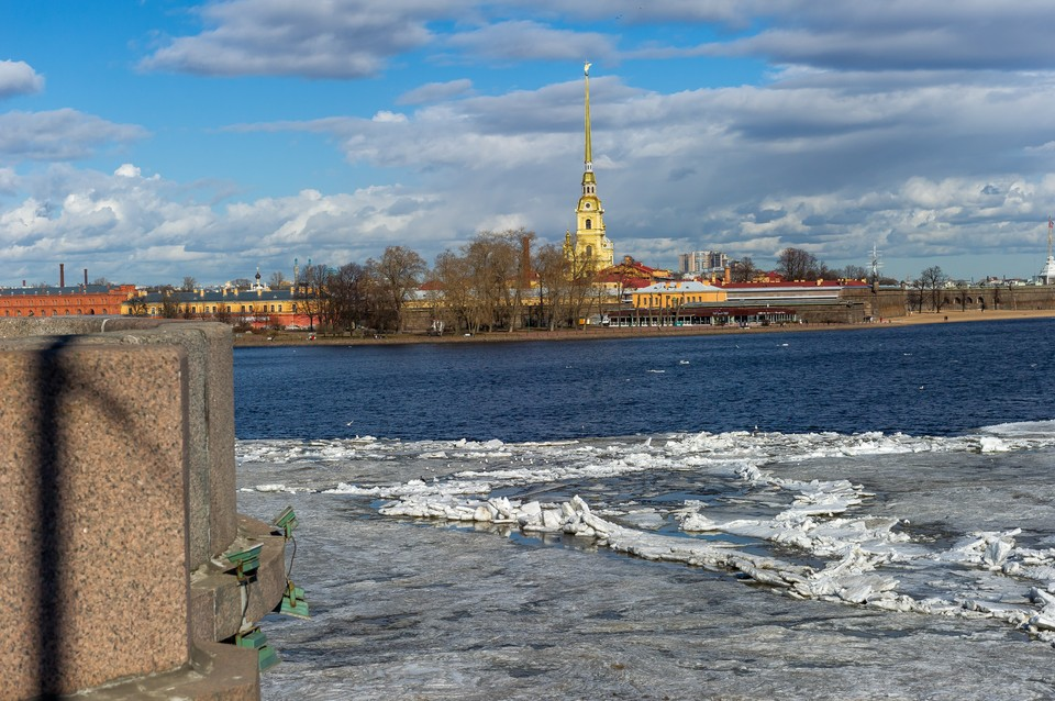 24 марта воздух в Петербурге прогрелся до +11 градусов.